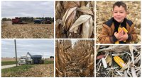 2014 National Corn Yield Contest Guide